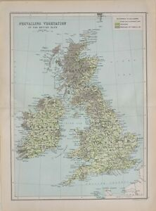 1901 CENSUS MAP BRITISH ISLES PREVAILING VEGETATION GRASS CULTIVATED LAND MOORS