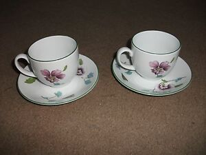 RARE-PATTERN-PAIR-OF-ROYAL-WORCESTER-CUPS-AND-SAUCERS-FLOWERS-AND-FLY-51