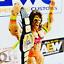 WWE-WWF-Cuero-Real-titulo-Intercontinental-por-Hasbro-Mattel-Jakks-figuras miniatura 4