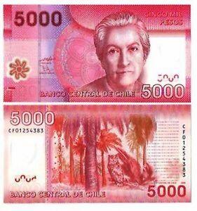 Cile-Chile-5000-pesos-2009-FDS-UNC-Pick-163a-lotto-2689