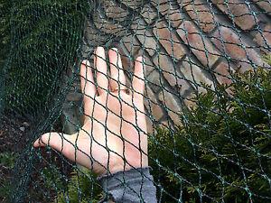 Vogelschutznetz-Teichnetz-Obstbaumnetz-Schutznetz-sehr-stark-viele-Groessen