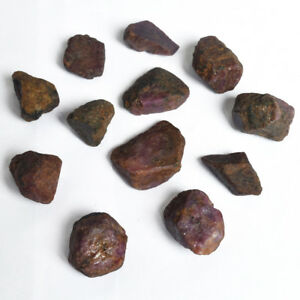 Natural-Star-Ruby-Rough-522-00-Ct-Lot-of-12-Pc-Crystal-Healing-Gemstones-DX-918
