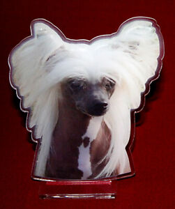 statuette-photosculptee-10x15-cm-chien-chinois-3-dog-hund-perro-cane