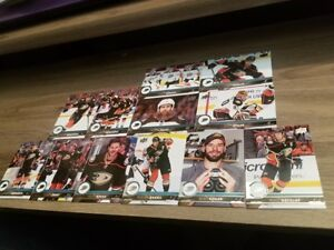 2017-18-UPPER-DECK-UD-SERIES-1-amp-SERIES-2-ANAHEIM-DUCKS-TEAM-SET-12-cards