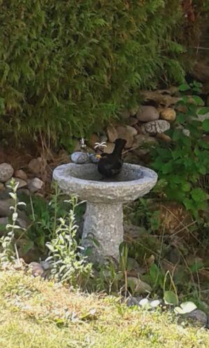 Vogelbad aus Granit