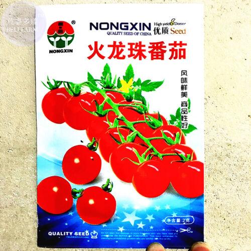 Round Cherry Tomato /'Fire Red/' Organic 300 Fresh Seeds Non-GMO Vegetable Garden