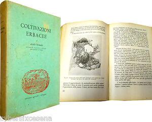 COLTIVAZIONI ERBACEE grimaldi 1948 ed. agricole - Italia - COLTIVAZIONI ERBACEE grimaldi 1948 ed. agricole - Italia