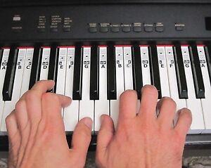 Modest image pertaining to piano key stickers printable