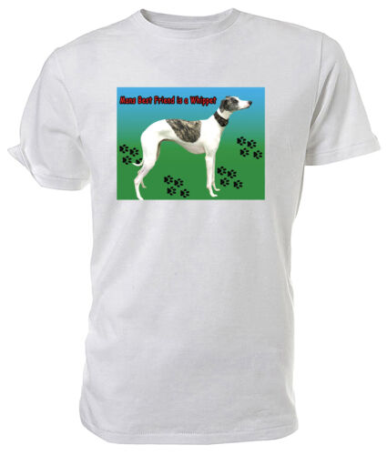 Whippet Dog T shirt Choice of size /& colours.