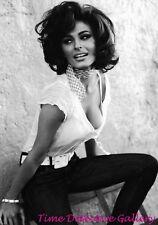 starlet SOPHIA LOREN vintage photo poster 1957 24X36 Famous Actress