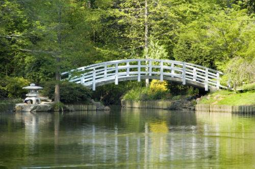 VLIES Fototapete-ZEN GARTEN- 323V -350x260cm-7Bahnen 50x260-Blumen Bäume Brücke