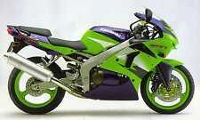 2 COLOUR KAWASAKI TOUCH UP PAINT KIT ZX6R 1998 LIME GREEN & MET VIOLET ROYAL