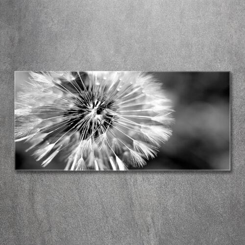 Glas-Bild Wandbilder Druck auf Glas 120x60 Deko Blumen & Pflanzen Pusteblumen