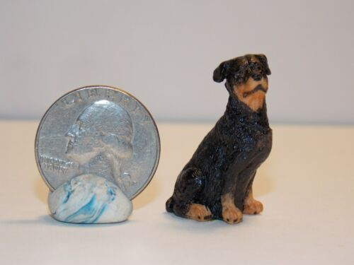 Dollhouse Miniature Rottweiler Puppy Dog 1:12 one inch scale K16 Dollys Gallery