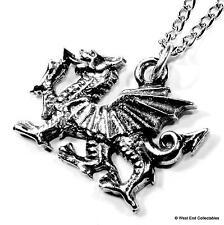 Welsh Dragon Pewter Charm Pendant Necklace - UK Made - Wales Cymru Y Ddraig Goch