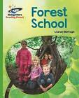 Reading Planet - Forest School - Green: Galaxy by Ciaran Murtagh, Helen Chapman (Paperback, 2016)