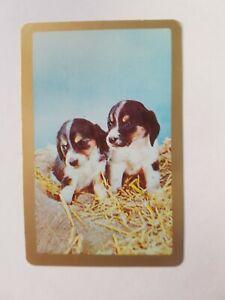 VINTAGE-SWAP-CARDS-COLES-034-PUPPIES-034-BLANK-BACK