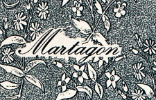 MARTAGON  FLEURS DE MONTAGNE   FRANCE Document Philatélique Officiel 1583