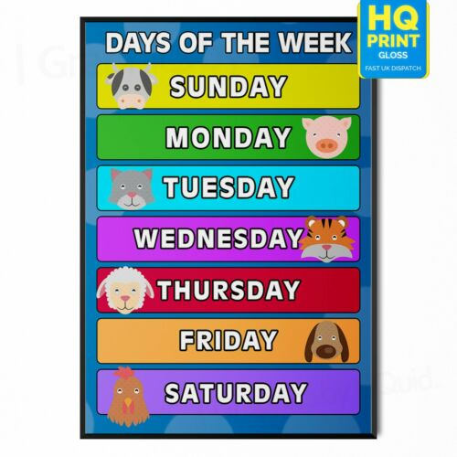 Kids Children Days Of The Week Learning Education Poster *LAMINATE* A4 A3
