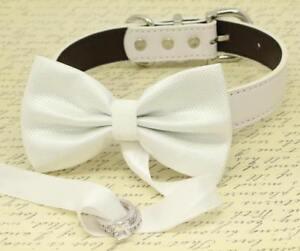 White-dog-bow-tie-ring-bearer-Collar-proposal-Handmade-High-Quality-Wedding