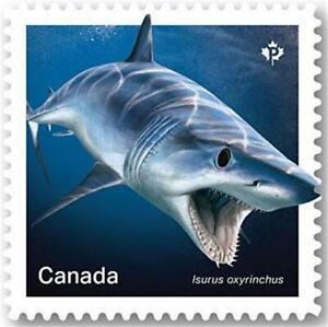 "2018 Canada 📭🦈🦈 MAKO SHARK Stamp 🦈🦈 ""P"" Single MNH 🦈📬"