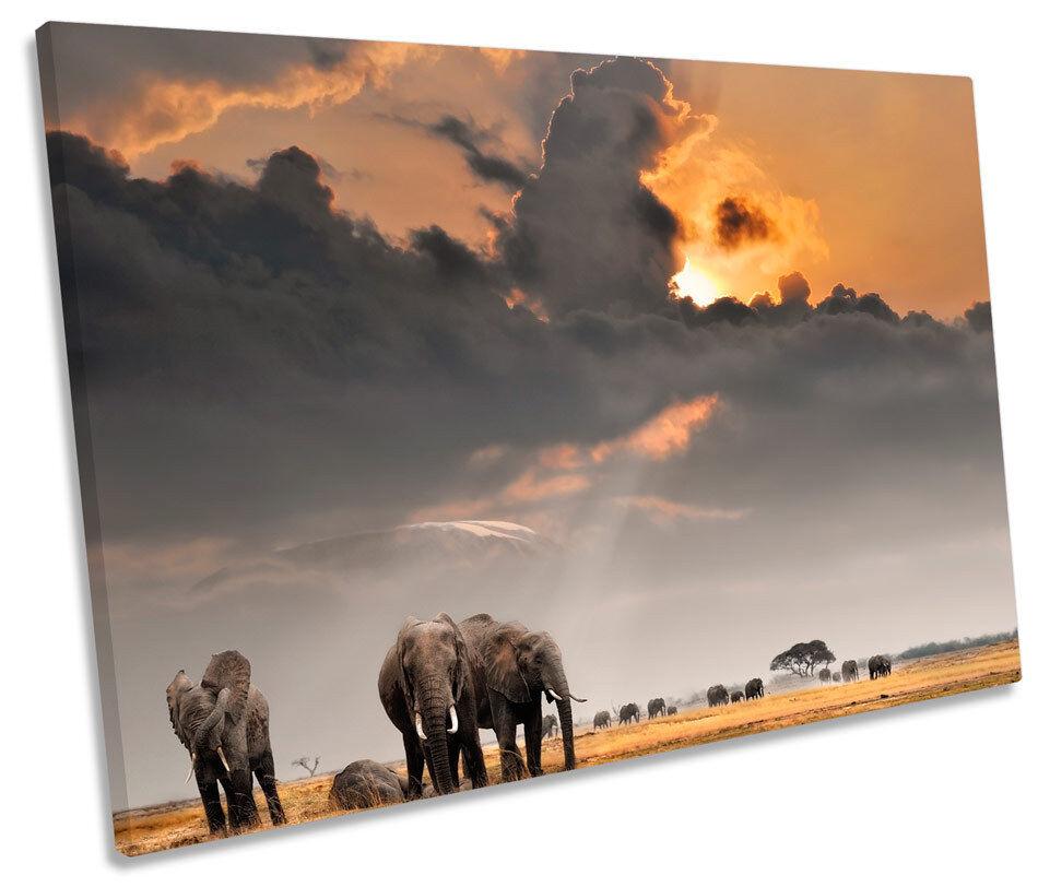 AFRICA AFRICA AFRICA SAFARI ELEFANTE TRAMONTO FOTO TELA singola Wall Art Print 23513f