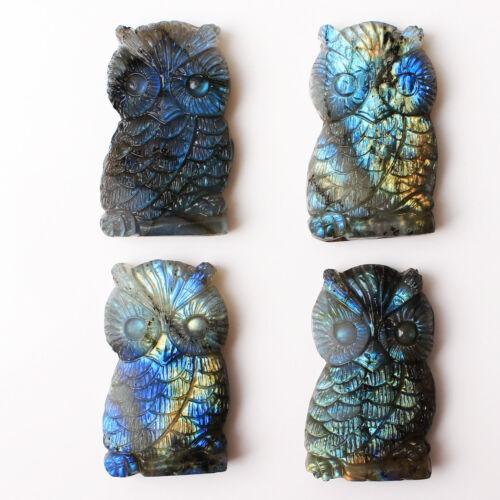 10Pcs Labradorite Crystal Carved Owl Animal Reiki Healing Home Decoration