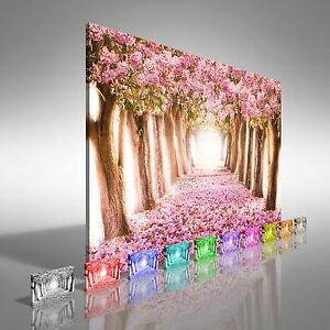 Romantic tunnel of pink flower trees canvas print large picture wall image is loading romantic tunnel of pink flower trees canvas print mightylinksfo