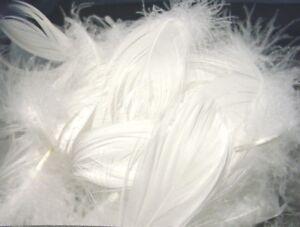 200 Dekofedern 15 g 60-100 mm , 20 verschiedene Farben, 1A Qualität