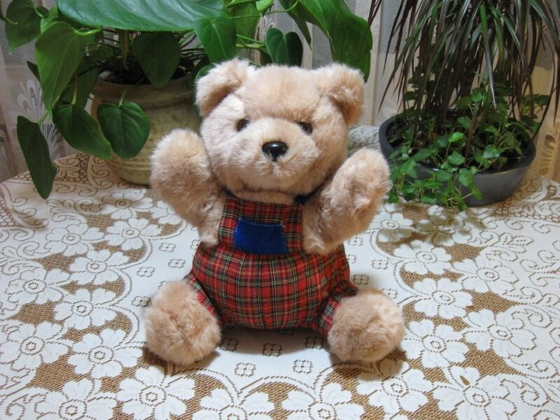 Kempenaar Holland Dutch Teddy Bear Plaid Clothing Beige 12 Inch