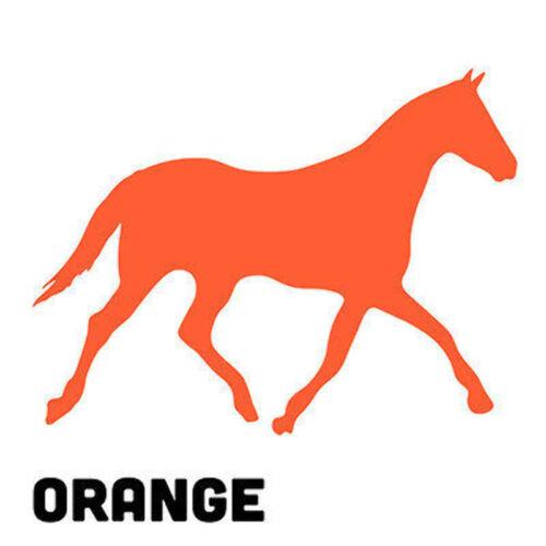 Horse Vinyl Sticker Decal Riding Club