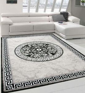 Image Is Loading Oriental Grey Rug Shimmer Ornament Modern Living Room