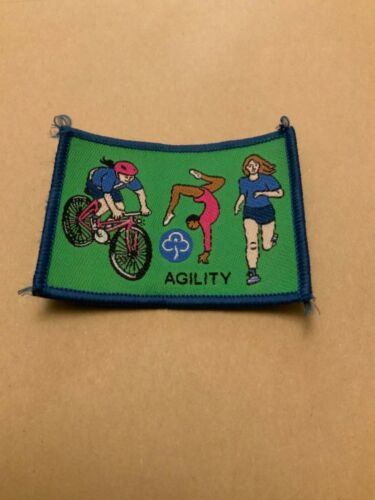 Obsolete official Girlguiding interest badges
