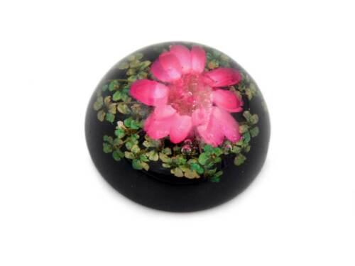Cabuchons de resina en negro con auténtico flor en rosa con diámetro 18 mm DIY