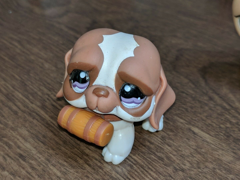 Littlest Pet Shop~#1118~Saint Bernard~Puppy Dog~Cream Brown~Around The World