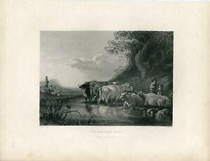 The-Shefferd-S-Watch-Engraved-By-W-Chevalier-Over-Artwork-Dealbert-Cuyp