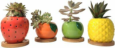 Plant Not Incl Pig Shaped Ceramic Succulent Cactus Flower Pots with Bamboo Tray