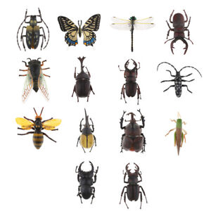 8pcs//set Plastic Insect Reptile Model Figures Kids Favor Educational Toys  R