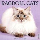 Ragdoll Cats 2017 Wall Calendar by Willow Creek Press