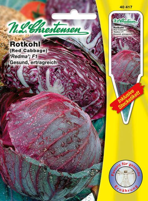 40417 Rotkohl 'Redma'  F1 gesund ertragreich  Saatgut 40417 Blaukraut Rotkraut
