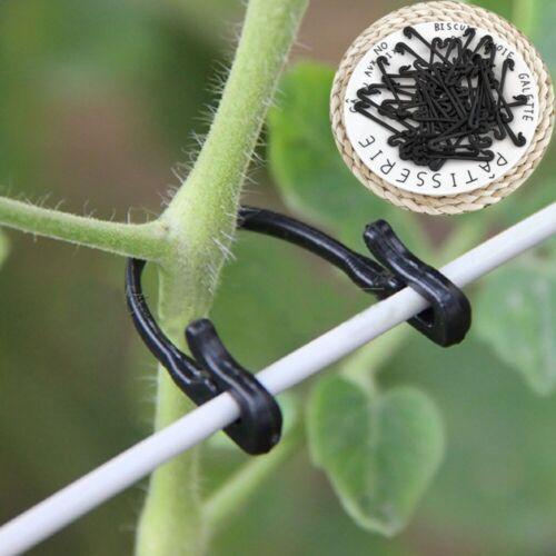 50x Pflanzenclips Pflanzenbinder Pflanzenklammer Binder Halter Pflanze ER