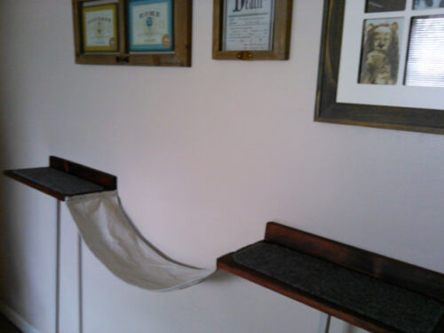 Cat Wall Shelves with Hamnmock