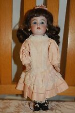 Darling Hard to find Antique 14 inch S & H 1299 Simon Halbig.  Cabinet size Doll