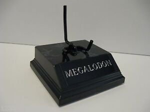 megalodon shark tooth display stand 3 1 4 for shark fossil tooth