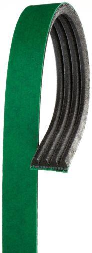 A//c Drive Belt FleetRunner Heavy Duty MicroV Gates for Acura Cadillac GMC