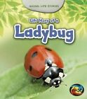 Life Story of a Ladybug by Charlotte Guillain (Hardback, 2014)