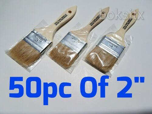 "50 pc 2/"" Chip Brush Brushes  Paint Glue Touchups 100/% Pure Bristle"
