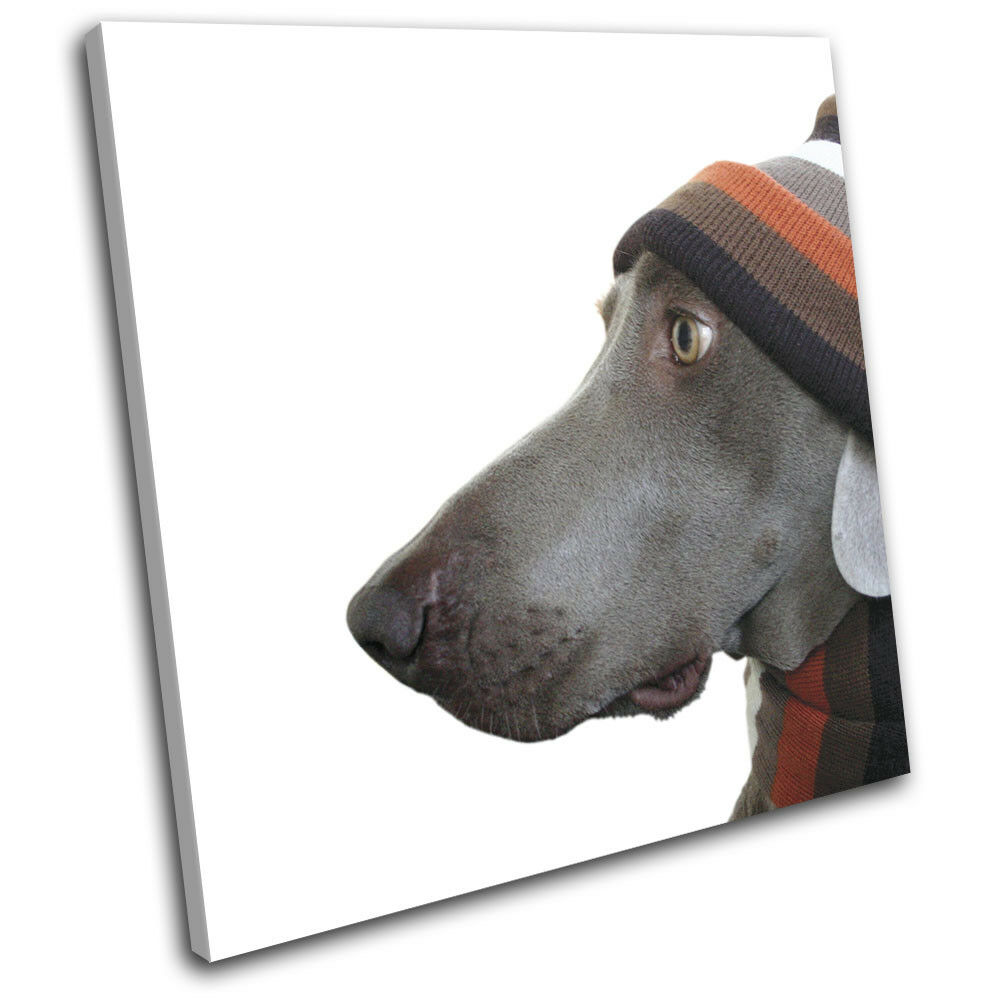 Dog in Hat and Scarf Humour Funny Animals SINGLE TOILE murale ART Photo Print
