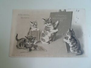 CATS-A-SCHOOL-BOARD-M-S-Ser-65-No-1108-Old-Postcard-Franked-Hull-1904-E1471
