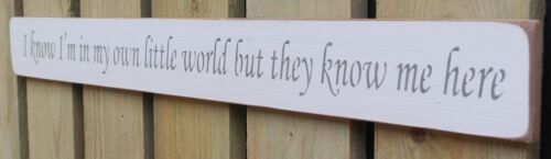 Shabby chic finish wooden sign I know I/'m in my own little World